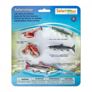 Жизненный цикл лосося Safari Ltd 100267