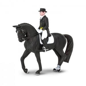 Всадник выездка Safari на лошади 151105