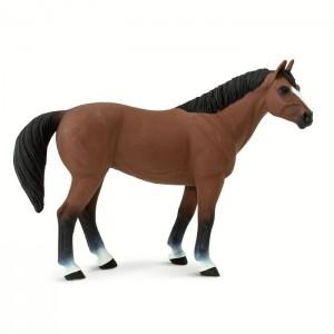 Кватерхорс (четвертьмильная лошадь) мерин Safari 153005