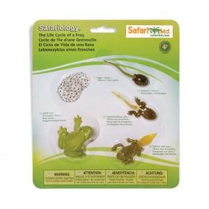 Жизненный цикл лягушки Safari Ltd 269129