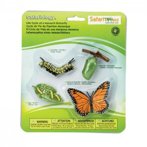 Жизненный цикл бабочки Safari Ltd 622616