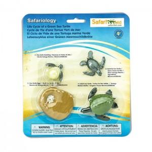 Жизненный цикл черепахи Safari Ltd 662316