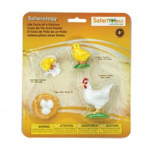 Жизненный цикл курицы Safari Ltd 662816