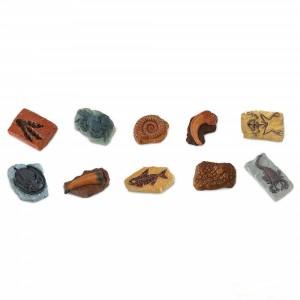 Набор древние окаменелости в тубусе Safari Ltd 684804