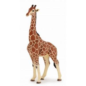 Самец жирафа Papo 50149